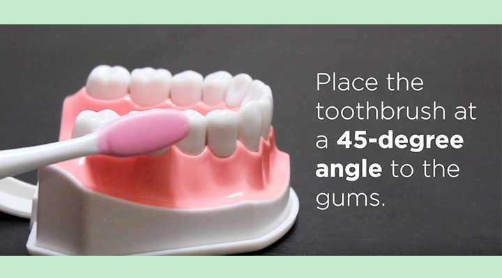 Place toothbrush at a 45-degree angle to the gums.