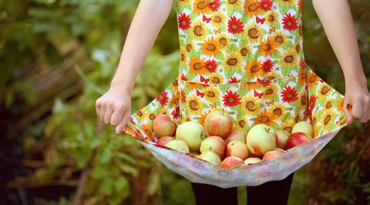 Girl holding a bunch of apples.